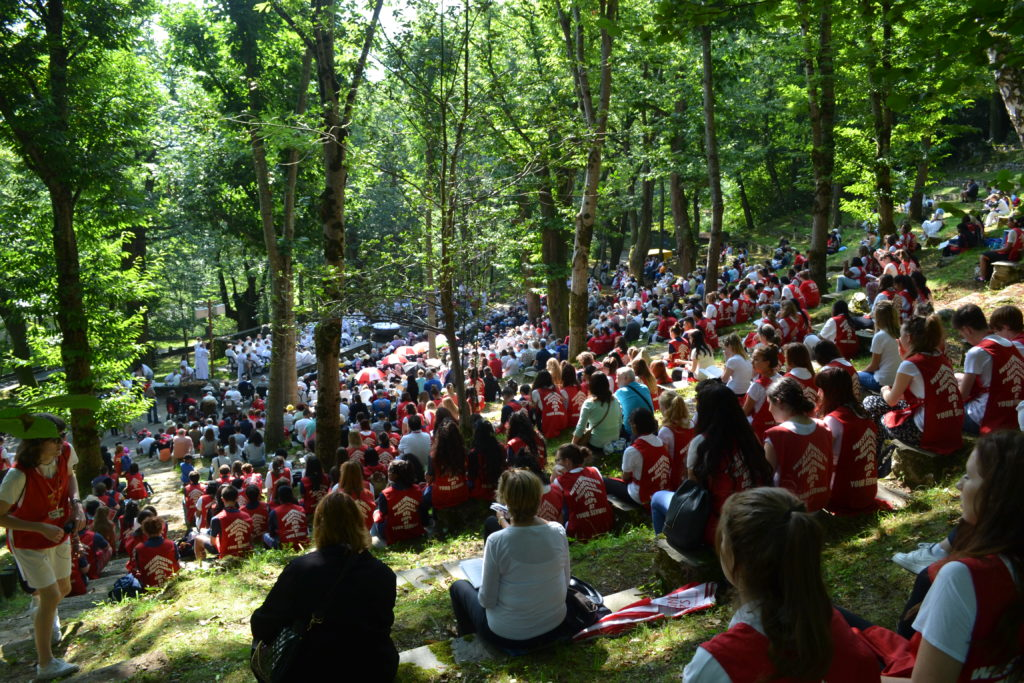 Mass in the Trees
