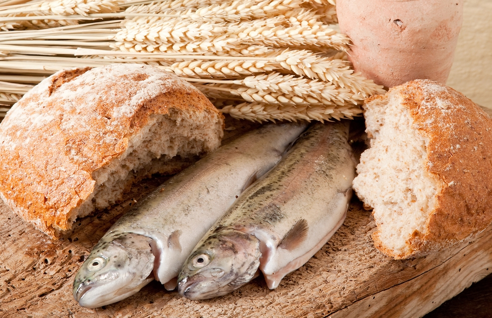 Youth ministry and the new evangelisation diocese of for Loaves and fishes volunteer