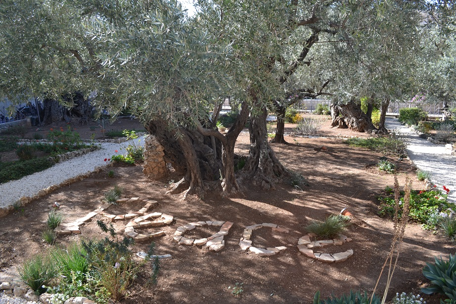 """""""Peace"""" in the Garden of Gethsemane"""